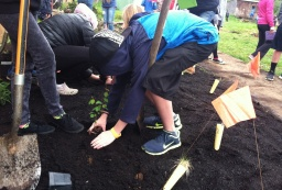 Students planting a native pollinator garden